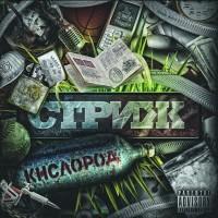 постер к альбому Стриж - Кислород (2010)